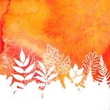 Fondo del fogliame di autunno dipinto acquerello arancio Fotografia Stock
