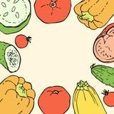 Fondo del garabato de los colores del vintage con pimientas, tomates, pepinos y calabazas Fotografía de archivo libre de regalías