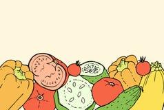 Fondo del garabato de los colores del vintage con pimientas, tomates, pepinos y calabazas Imagenes de archivo