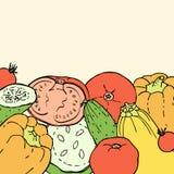 Fondo del garabato de los colores del vintage con pimientas, tomates, pepinos y calabazas Foto de archivo