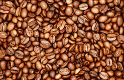 Fondo del grano de café Fotografía de archivo