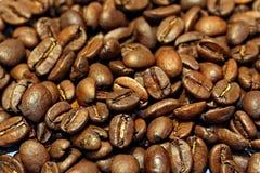Fondo del grano de café Fotografía de archivo libre de regalías