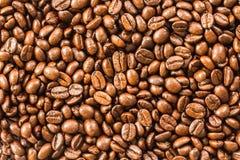 Fondo del grano de café Imágenes de archivo libres de regalías