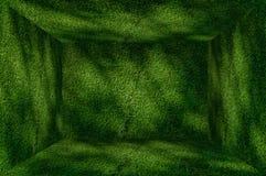 Fondo del interior de la pared y del piso del verde de hierba de la perspectiva Fotografía de archivo