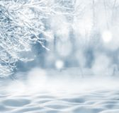 Fondo del invierno Foto de archivo