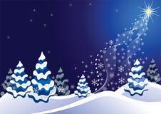 Fondo del invierno. Foto de archivo
