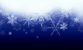 Fondo del invierno con las escamas de la nieve Fotos de archivo