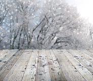 Fondo del invierno con nieve que cae Fotos de archivo libres de regalías