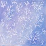 Fondo del invierno de la acuarela con las ramas blancas ilustración del vector