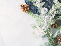 Fondo del invierno de la Navidad con las ramas de árbol de abeto Imagen de archivo