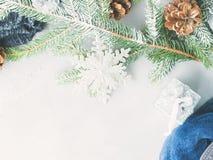Fondo del invierno de la Navidad con las ramas de árbol de abeto Imagen de archivo libre de regalías