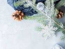 Fondo del invierno de la Navidad con las ramas de árbol de abeto Imagenes de archivo