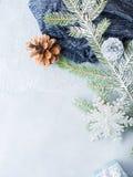 Fondo del invierno de la Navidad con las ramas de árbol de abeto vertical Foto de archivo libre de regalías