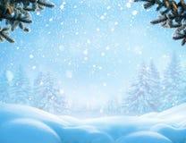 Fondo del invierno de la Navidad con la rama de árbol de la nieve y de abeto fotos de archivo