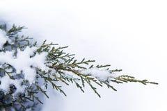 Fondo del invierno del arte Imagen de archivo libre de regalías