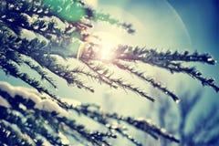 Fondo del invierno del vintage Fotografía de archivo libre de regalías