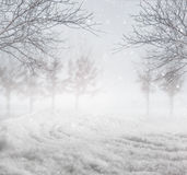 Fondo del invierno Nevado Fotos de archivo libres de regalías