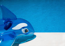 Fondo del lado de la piscina de la diversión Foto de archivo libre de regalías