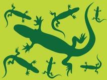 Fondo del lagarto Imágenes de archivo libres de regalías