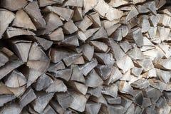 Fondo del legno di faggio nell'inverno Immagini Stock Libere da Diritti