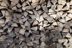 Fondo del legno di faggio nell'inverno Fotografia Stock