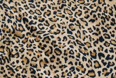 Fondo del leopardo Fotografia Stock Libera da Diritti