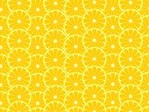 Fondo del limone Immagine Stock Libera da Diritti