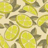 Fondo del limone Fotografie Stock