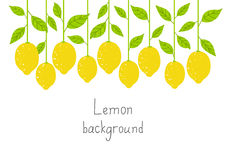 Fondo del limone Immagini Stock Libere da Diritti
