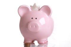 Fondo del maiale Fotografie Stock Libere da Diritti