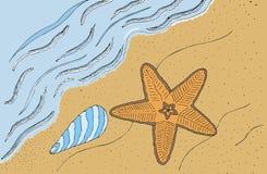 Fondo del mar Foto de archivo libre de regalías