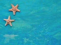 Fondo del mar de la turquesa de las materias textiles con las estrellas de mar Imagen de archivo libre de regalías