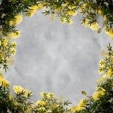 Fondo del marco de la flor Fotografía de archivo