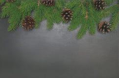 Fondo del marco de la Navidad de conos del pino del árbol de Navidad en el blac Fotos de archivo libres de regalías