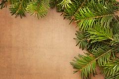 Fondo del marco de las ramas de árbol de navidad fotos de archivo libres de regalías
