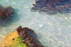 Fondo del mare con le pietre Fotografia Stock Libera da Diritti