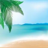 Fondo del mare e della spiaggia con il ramo della palma Fotografia Stock