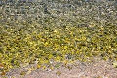 Fondo del mare a Iraklion, isola di Creta Immagini Stock