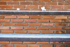 Fondo del mattone dell'argilla con il frangipane ed il legno bianchi della sfuocatura lei Fotografie Stock