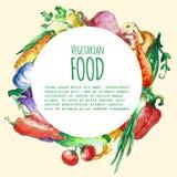 Fondo del menu dell'alimento di Eco Verdure disegnate a mano dell'acquerello Immagine Stock Libera da Diritti