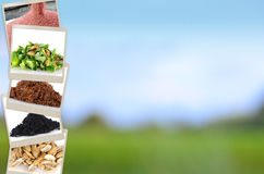 Fondo del minerale e del fertilizzante di agricoltura Immagini Stock