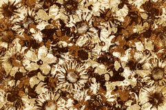 Fondo del modello di fiore di marrone di lerciume di arte illustrazione di stock