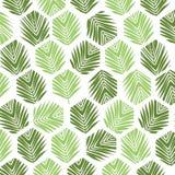 Fondo del modello del poligono delle foglie di palma Stile piano Immagini Stock