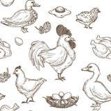 Fondo del modelo del bosquejo del pollo y de los patos Vector inconsútil stock de ilustración