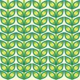 Fondo del modelo de la planta de las hojas Imágenes de archivo libres de regalías