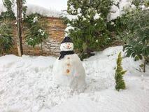Fondo del muñeco de nieve Imagen de archivo