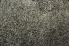 Fondo del muro de cemento Fotografía de archivo libre de regalías
