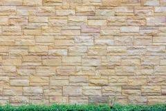 Fondo del muro di mattoni con il pavimento verde della foglia Immagini Stock
