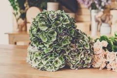 Fondo del negozio di fiore Fiori e rose verdi per la consegna del mazzo Immagini Stock Libere da Diritti
