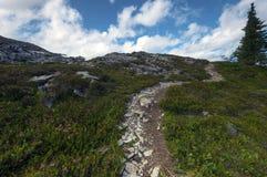 Fondo del noroeste pacífico de Washington State Hiking Climbing Landscape Waterscape Foto de archivo